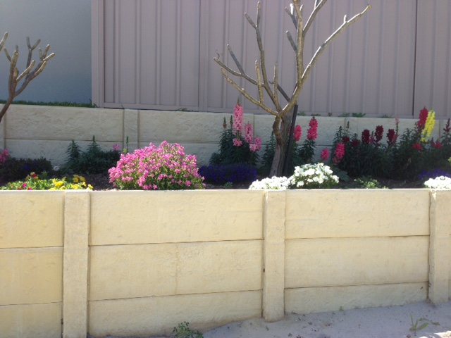 landscaping ideas in backyards
